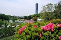 57青木正由「タワー遠望」.jpg