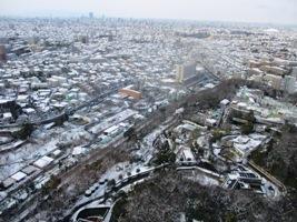 snow scene_2.JPG